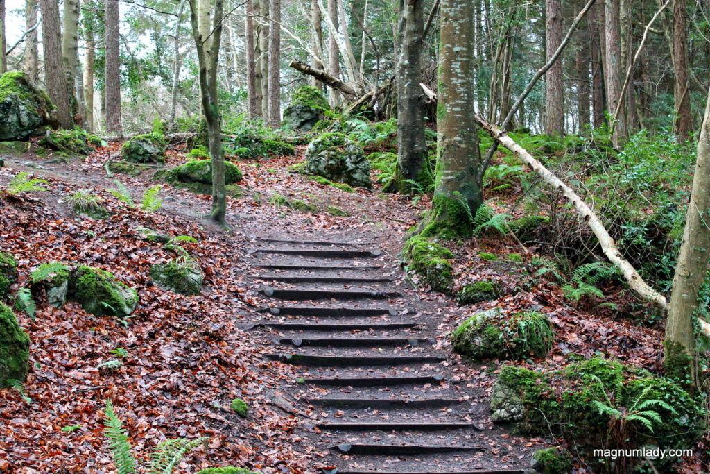 Steps at Dooney Rock