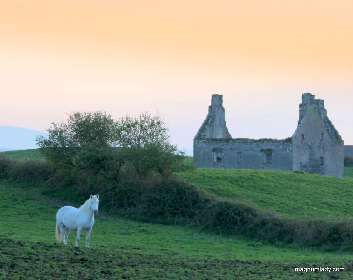 Ten Photos of beautiful Sligo